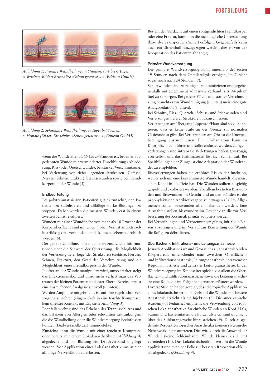 Prinzipien Der Anatomie Und Physiologie 13...